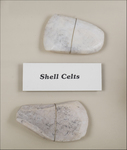 Shell Celt Marion County