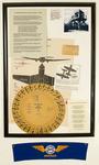 Aircraft Warning Disc