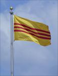 SV Flag, 2