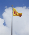 SV Flag, 4