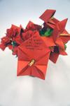 Fortune Flowers by Rachel Jeter