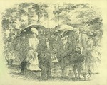 Park scene of well dressed freedmen.
