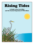 Rising Tides: A Guide to Sea Level Rise and the Coastal Organisms It Will Affect by Linda Walters and Sydney Katz