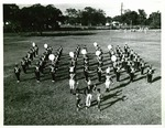Bethune-Cookman Wildcats Marching Band 2