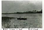 3 Men in a Boat, Bird Island