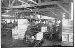 A. Duda & Sons, Inc. celery packing house in Slavia, c. 1945, Original