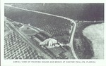 Aerial view of a packing house and grove at Doctor Phillips, Florida.