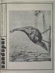 Sandspur, Vol 79 No 07, November 20,1972