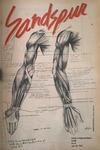 Sandspur, Vol 89, No 16, April 26, 1983 by Rollins College