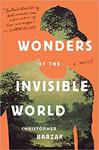 Wonders of the Invisible World
