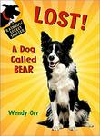 Lost!: A Dog Called Bear