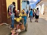 Fruit for Sale in Trinidad, Cuba by Wendy S. Howard EdD