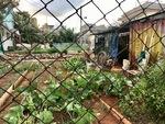 Urban Community Garden by Wendy S. Howard EdD