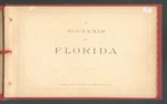 A Souvenir Of Florida, 1888