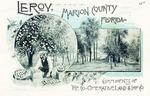 Leroy, Marion County, Florida