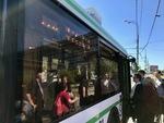 Boarding a Bus by Wendy S. Howard EdD