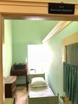 Alexander's Bedroom by Wendy S. Howard EdD