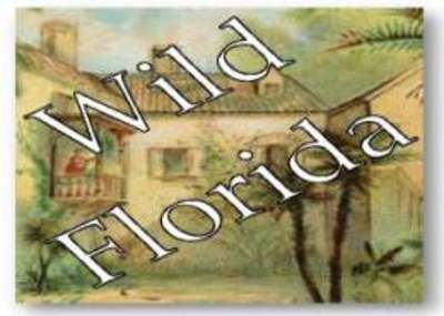 Wild Florida: Tourism before Disney, Exhibit Icon