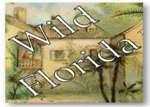 Wild Florida: Tourism before Disney, Exhibit Icon by Amanda Richards
