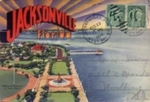 Tacky Treasures: Vintage Florida Souvenirs, Exhibit Icon