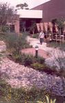 Burnett honors College, garden