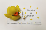 Thanks a million! Card for duck
