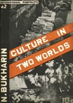 Culture in two worlds