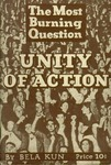 The most burning question: Unity of action
