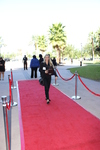 Red Carpet 27