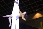 Acrobats on Silks 1 by Rosen College of Hospitality Management