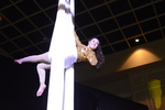 Acrobats on Silks 2