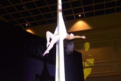 Acrobats on Silks 5