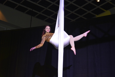 Acrobats on Silks 6