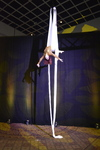 Acrobats on Silks 7