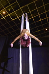 Acrobats on Silks 9