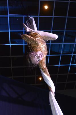 Acrobats on Silks 13