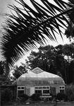 Arboretum, Stockard Conservatory