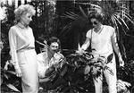 Arboretum - Paige, Neal & Salazar